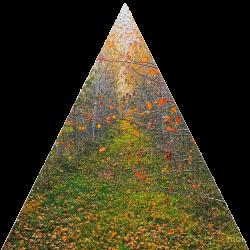 Трикутні полотна
