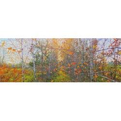 Панорамні полотна